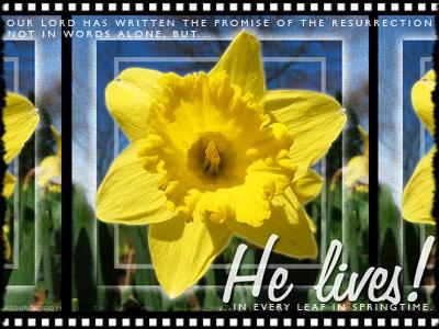 he-lives-spring400