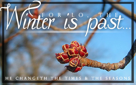 winter-is-past